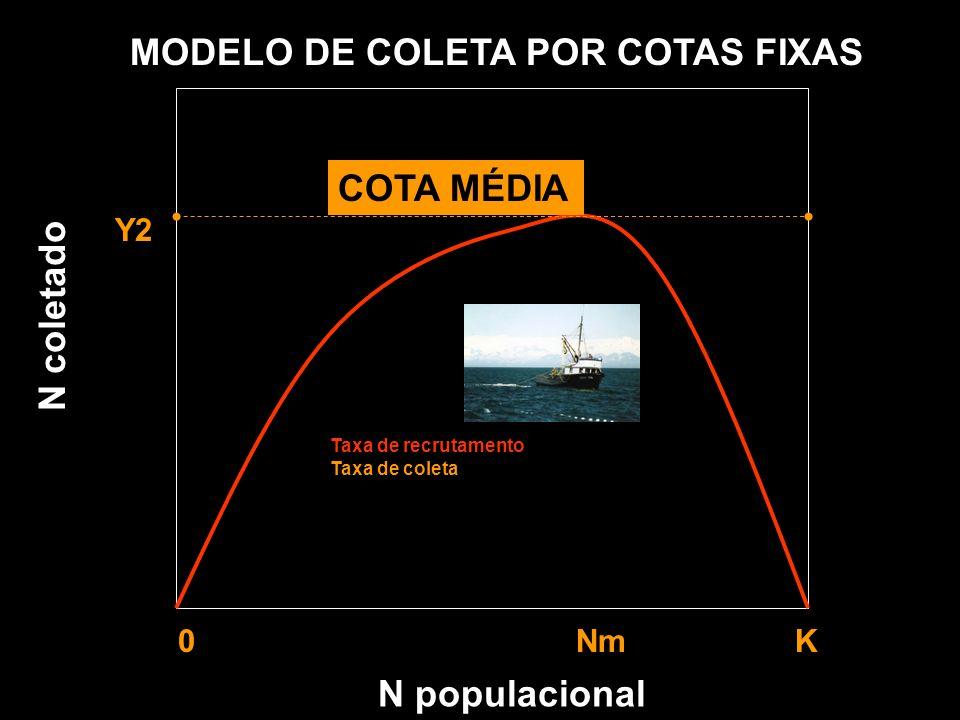 N populacional MODELO DE COLETA POR COTAS FIXAS Y1 Y2 Y3 0 Nm K Taxa de recrutamento Taxa de coleta N coletado COTA MÉDIA