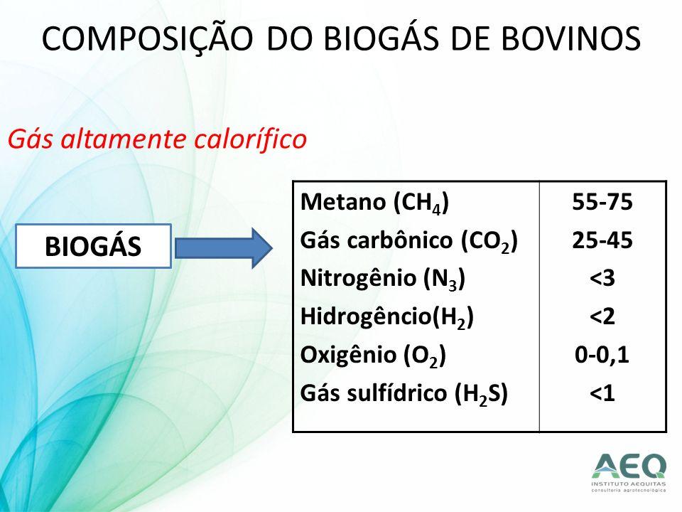 COMPOSIÇÃO DO BIOGÁS DE BOVINOS Gás altamente calorífico BIOGÁS Metano (CH 4 ) Gás carbônico (CO 2 ) Nitrogênio (N 3 ) Hidrogêncio(H 2 ) Oxigênio (O 2
