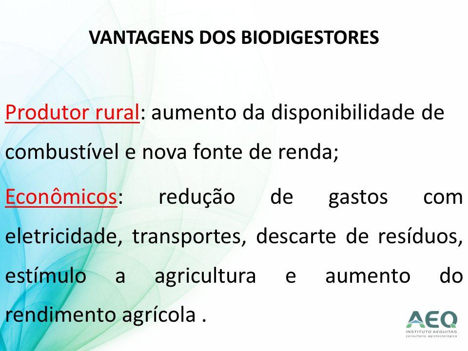 Produtor rural: aumento da disponibilidade de combustível e nova fonte de renda; Econômicos: redução de gastos com eletricidade, transportes, descarte