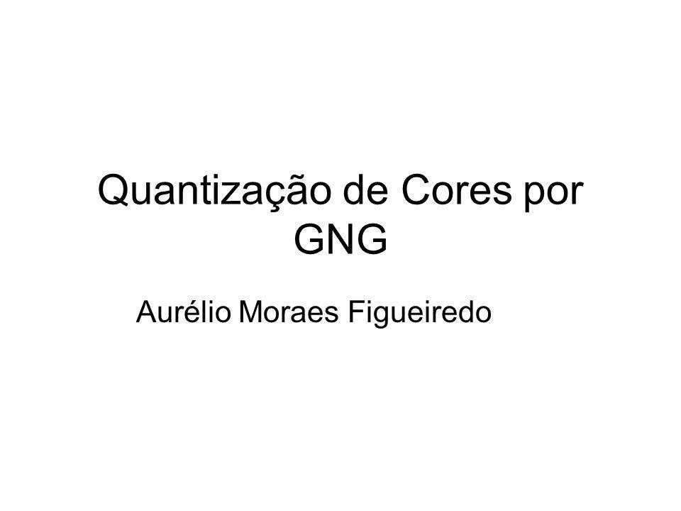 Quantização de Cores por GNG Aurélio Moraes Figueiredo