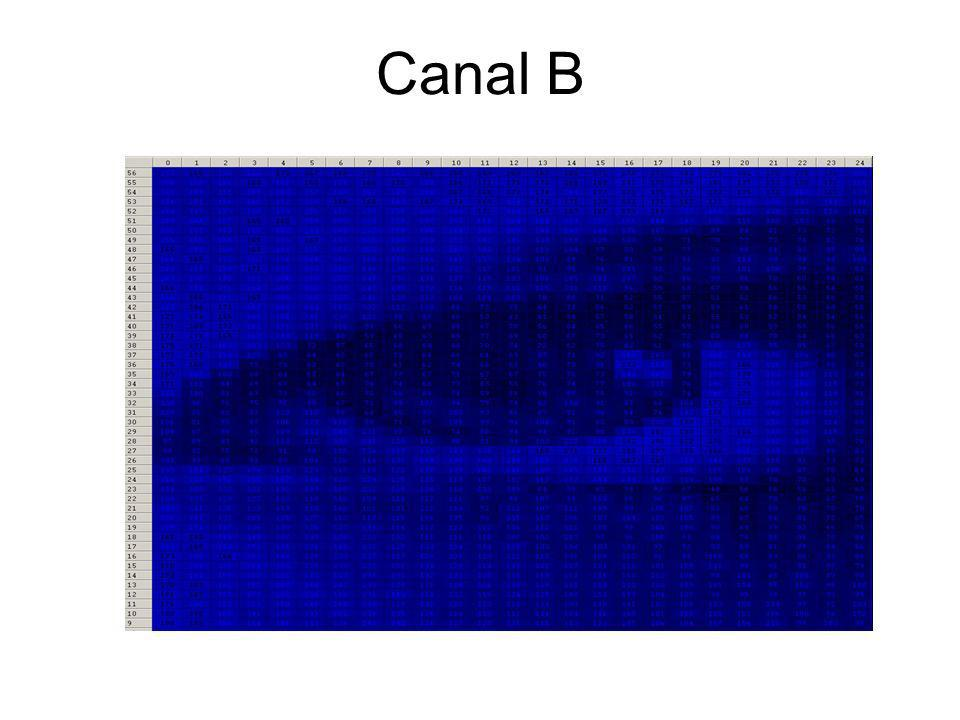 Canal B