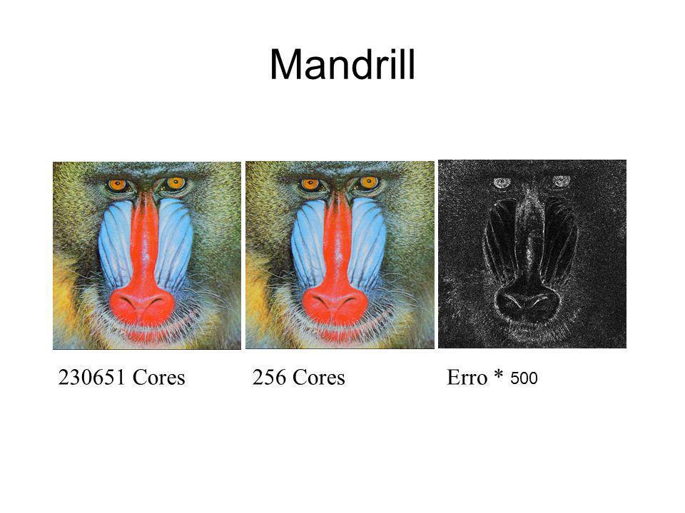 Mandrill 230651 Cores256 CoresErro * 500