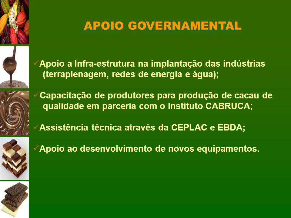 APOIO GOVERNAMENTAL Apoio a Infra-estrutura na implantação das indústrias (terraplenagem, redes de energia e água); Capacitação de produtores para pro