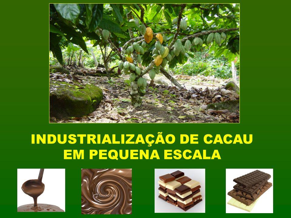 INDUSTRIALIZAÇÃO DE CACAU EM PEQUENA ESCALA