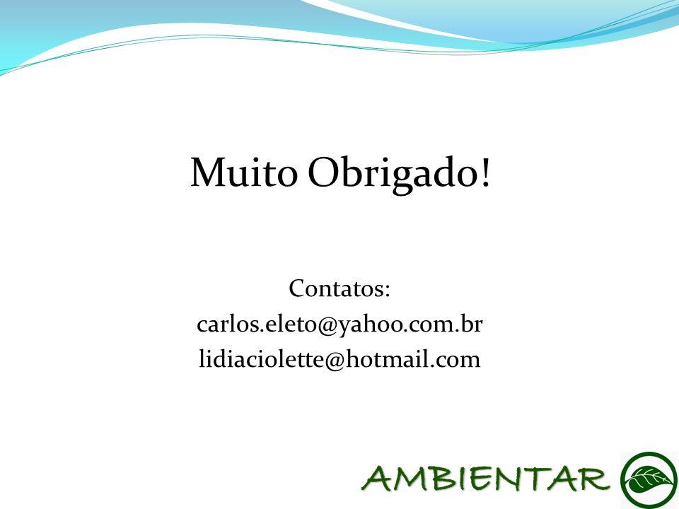 Muito Obrigado! Contatos: carlos.eleto@yahoo.com.br lidiaciolette@hotmail.com