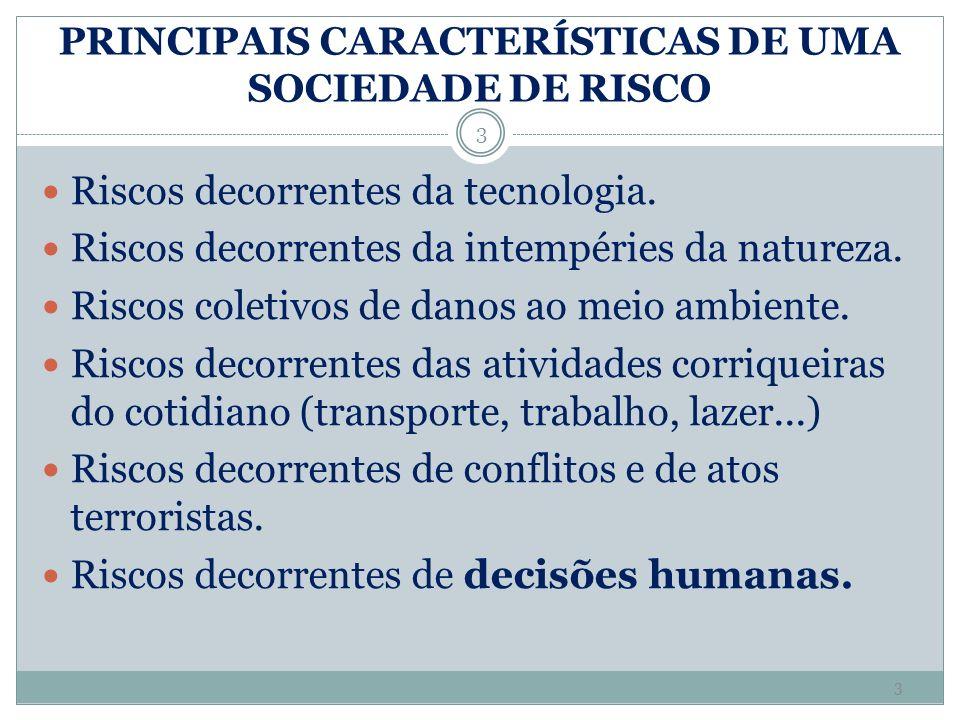 PRINCIPAIS CARACTERÍSTICAS DE UMA SOCIEDADE DE RISCO Riscos decorrentes da tecnologia. Riscos decorrentes da intempéries da natureza. Riscos coletivos