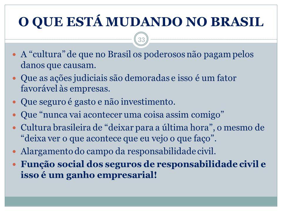 O QUE ESTÁ MUDANDO NO BRASIL 33 A cultura de que no Brasil os poderosos não pagam pelos danos que causam. Que as ações judiciais são demoradas e isso
