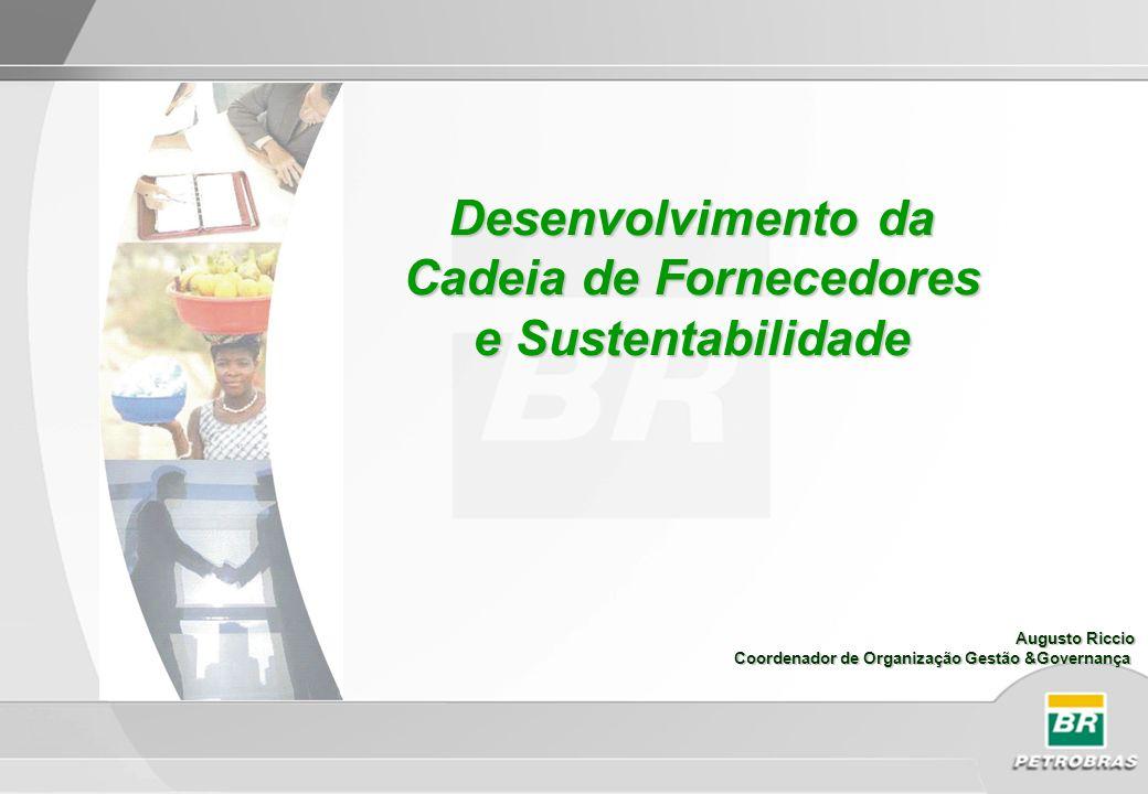 Desenvolvimento da Cadeia de Fornecedores e Sustentabilidade Augusto Riccio Coordenador de Organização Gestão &Governança