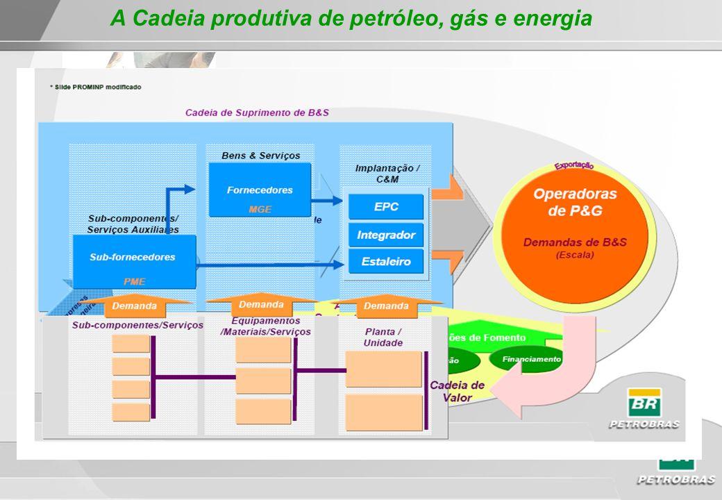 *Apresentação de briefing da Petrobras Adequação do Parque Supridor Nacional