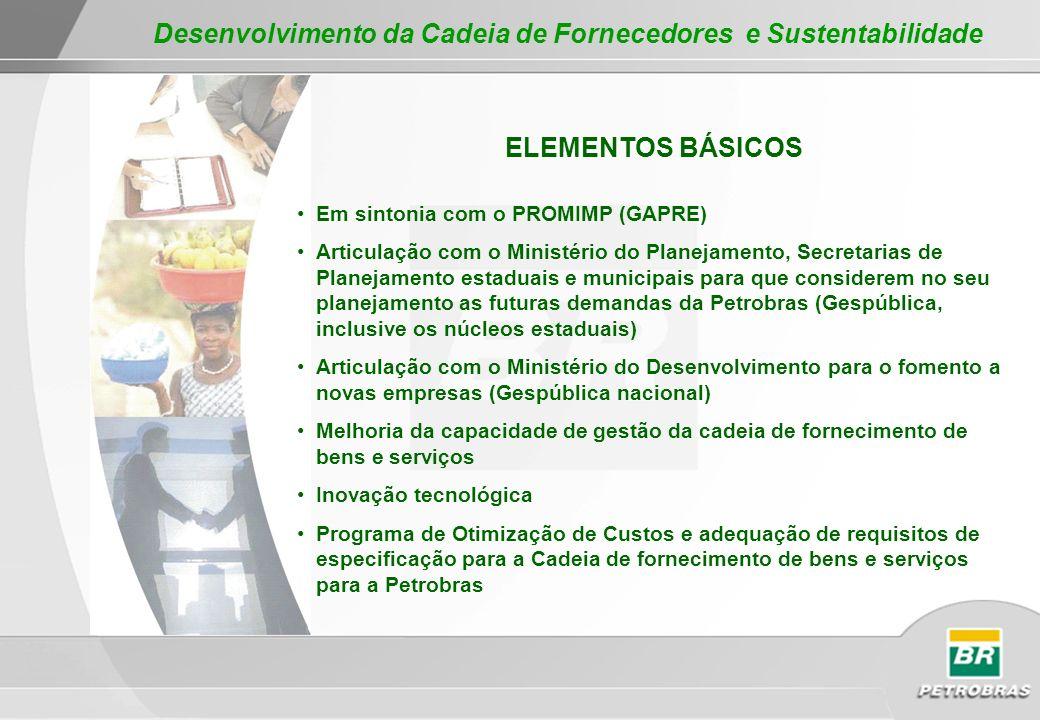 ELEMENTOS BÁSICOS Em sintonia com o PROMIMP (GAPRE) Articulação com o Ministério do Planejamento, Secretarias de Planejamento estaduais e municipais p