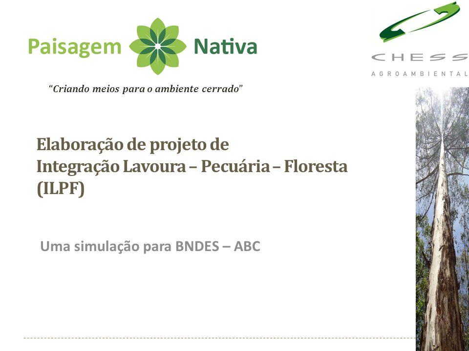 Elaboração de projeto de Integração Lavoura – Pecuária – Floresta (ILPF) Uma simulação para BNDES – ABC Criando meios para o ambiente cerrado