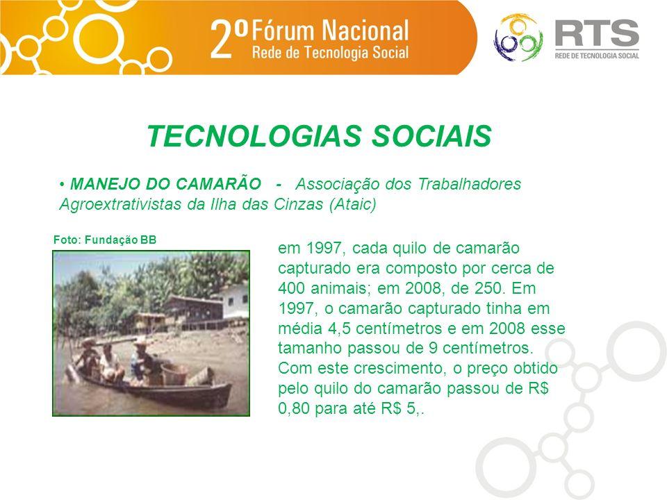 TECNOLOGIAS SOCIAIS MANEJO DO CAMARÃO - Associação dos Trabalhadores Agroextrativistas da Ilha das Cinzas (Ataic) Foto: Fundação BB em 1997, cada quil