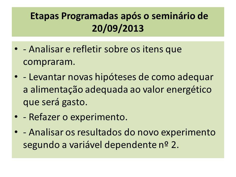 Etapas Programadas após o seminário de 20/09/2013 - Analisar e refletir sobre os itens que compraram.