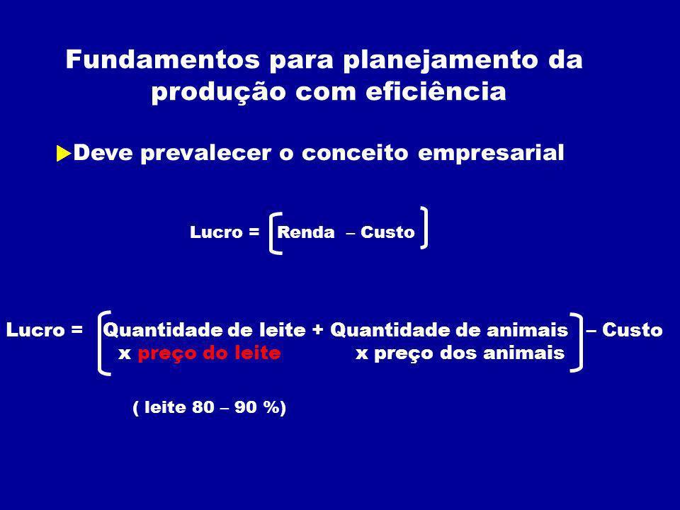 Fundamentos para planejamento da produção com eficiência Deve prevalecer o conceito empresarial Lucro = Renda – Custo Lucro = Quantidade de leite + Quantidade de animais – Custo x preço do leite x preço dos animais ( leite 80 – 90 %)