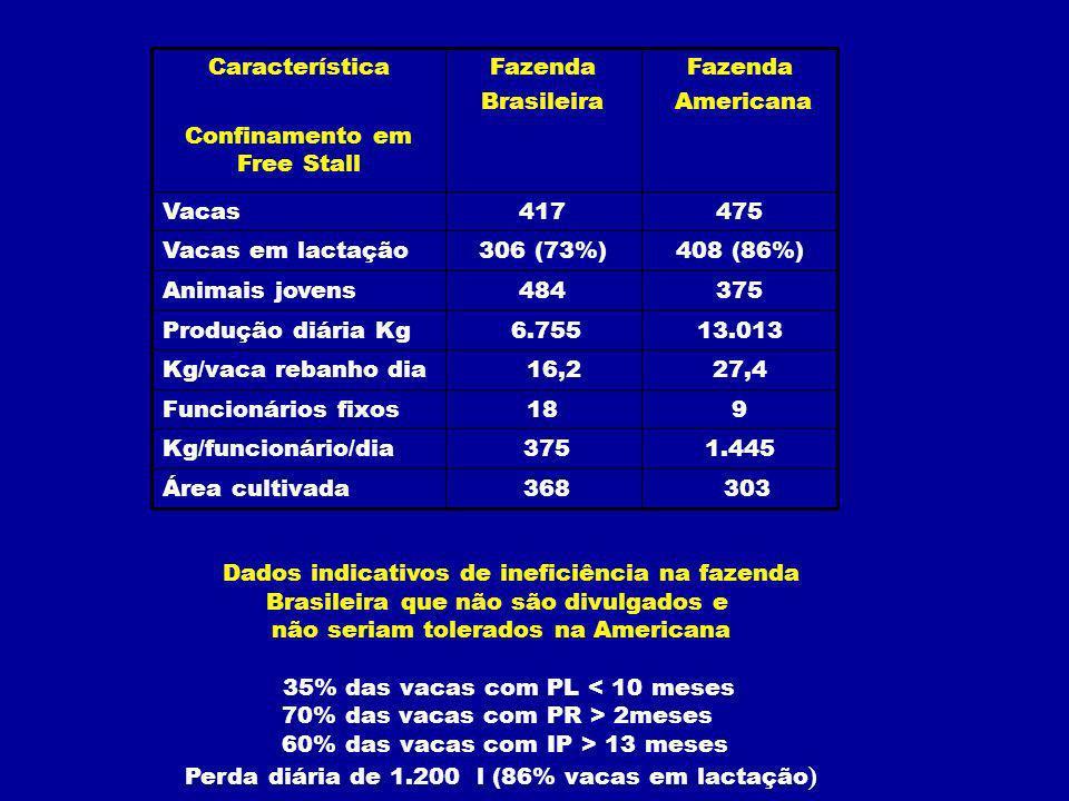 303 368Área cultivada 1.445 375Kg/funcionário/dia 918Funcionários fixos 27,4 16,2Kg/vaca rebanho dia 13.013 6.755Produção diária Kg 375484Animais jovens 408 (86%)306 (73%)Vacas em lactação 475417Vacas Fazenda Americana Fazenda Brasileira Característica Confinamento em Free Stall Dados indicativos de ineficiência na fazenda Brasileira que não são divulgados e não seriam tolerados na Americana 35% das vacas com PL < 10 meses 70% das vacas com PR > 2meses 60% das vacas com IP > 13 meses Perda diária de 1.200 l (86% vacas em lactação )