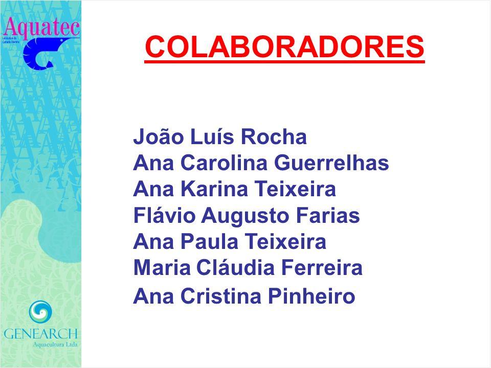 COLABORADORES João Luís Rocha Ana Carolina Guerrelhas Ana Karina Teixeira Flávio Augusto Farias Ana Paula Teixeira Maria Cláudia Ferreira Ana Cristina