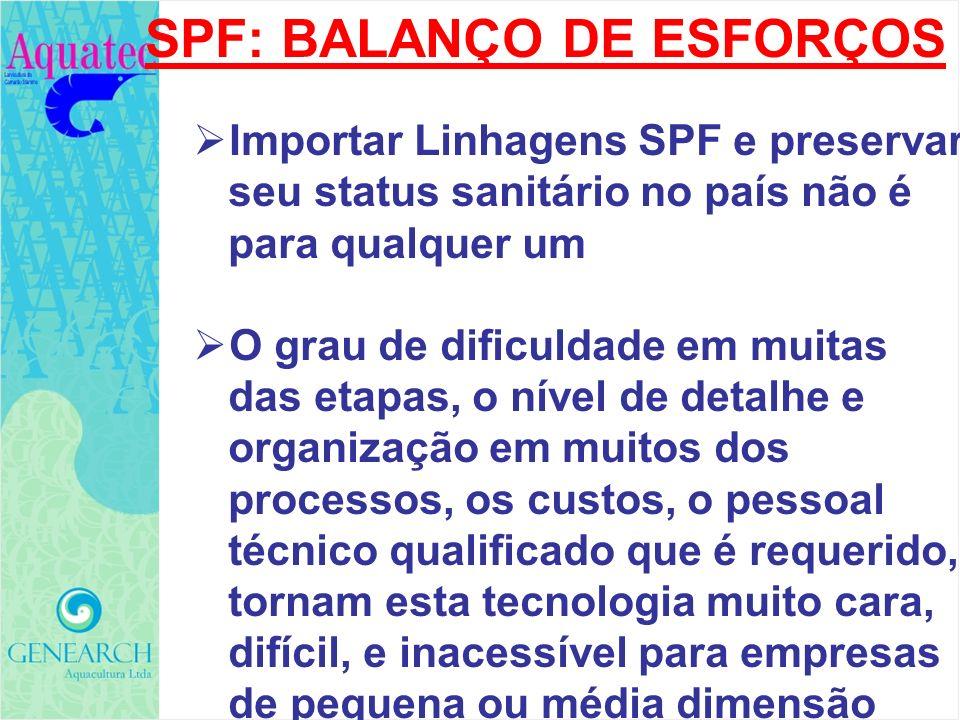 SPF: BALANÇO DE ESFORÇOS Importar Linhagens SPF e preservar seu status sanitário no país não é para qualquer um O grau de dificuldade em muitas das et