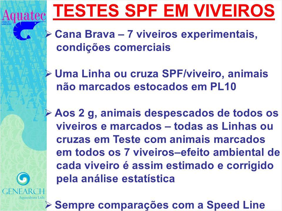 TESTES SPF EM VIVEIROS Cana Brava – 7 viveiros experimentais, condições comerciais Uma Linha ou cruza SPF/viveiro, animais não marcados estocados em P