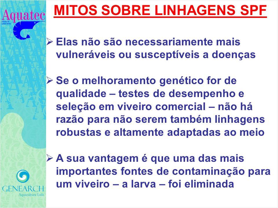 MITOS SOBRE LINHAGENS SPF Elas não são necessariamente mais vulneráveis ou susceptíveis a doenças Se o melhoramento genético for de qualidade – testes