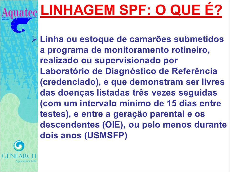 LINHAGEM SPF: O QUE É? Linha ou estoque de camarões submetidos a programa de monitoramento rotineiro, realizado ou supervisionado por Laboratório de D