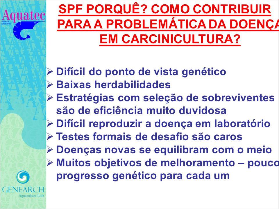 SPF PORQUÊ? COMO CONTRIBUIR PARA A PROBLEMÁTICA DA DOENÇA EM CARCINICULTURA? Difícil do ponto de vista genético Baixas herdabilidades Estratégias com