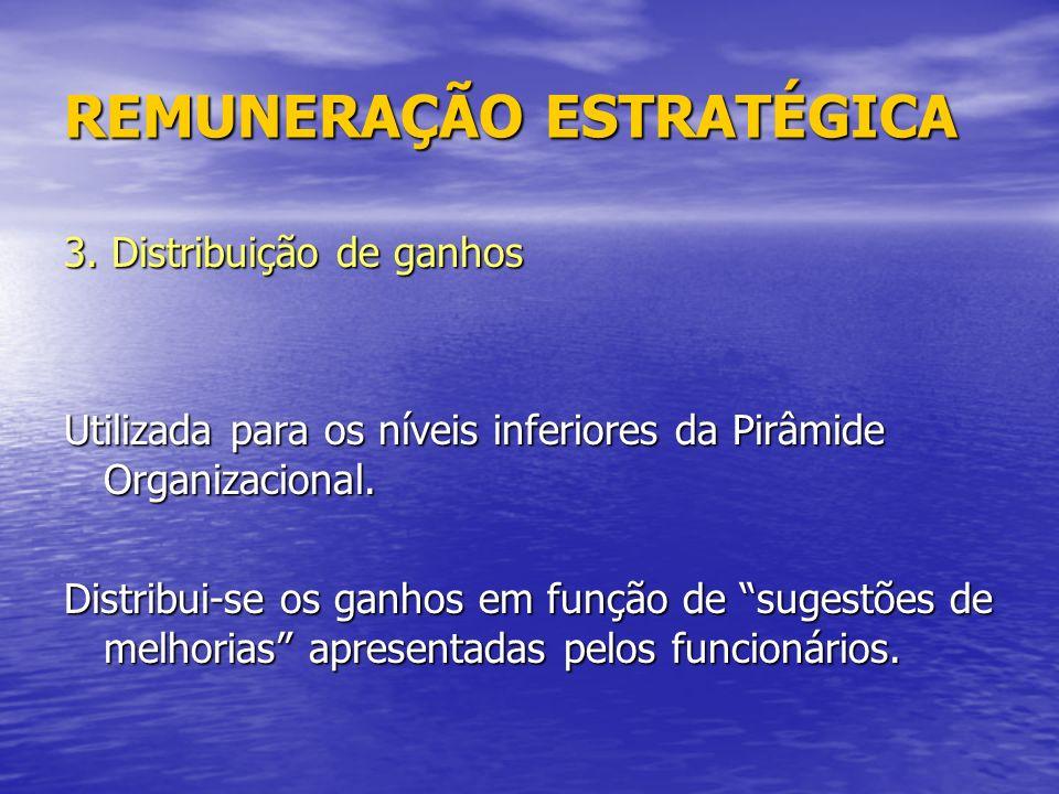 REMUNERAÇÃO ESTRATÉGICA 3.