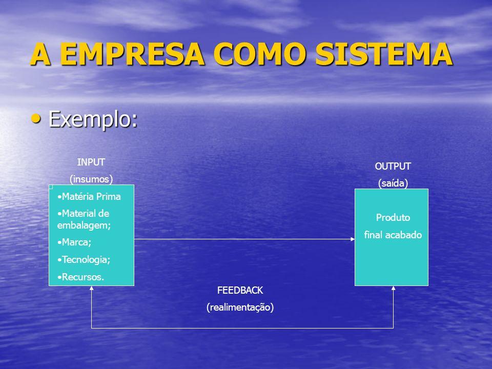 A EMPRESA COMO SISTEMA Exemplo: Exemplo: INPUT (insumos) Matéria Prima Material de embalagem; Marca; Tecnologia; Recursos.