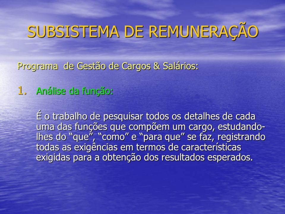 SUBSISTEMA DE REMUNERAÇÃO Programa de Gestão de Cargos & Salários: 1.