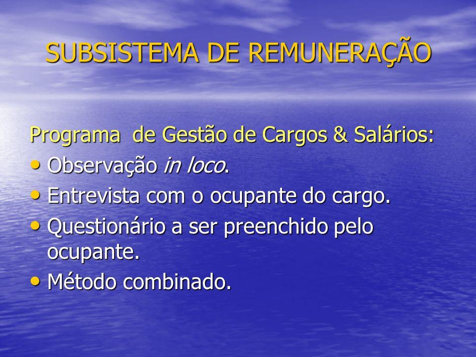SUBSISTEMA DE REMUNERAÇÃO Programa de Gestão de Cargos & Salários: Observação in loco.