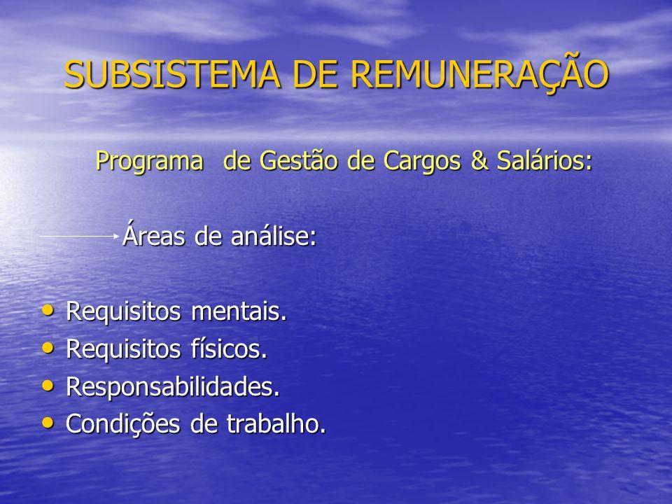 SUBSISTEMA DE REMUNERAÇÃO Programa de Gestão de Cargos & Salários: Programa de Gestão de Cargos & Salários: Áreas de análise: Áreas de análise: Requisitos mentais.