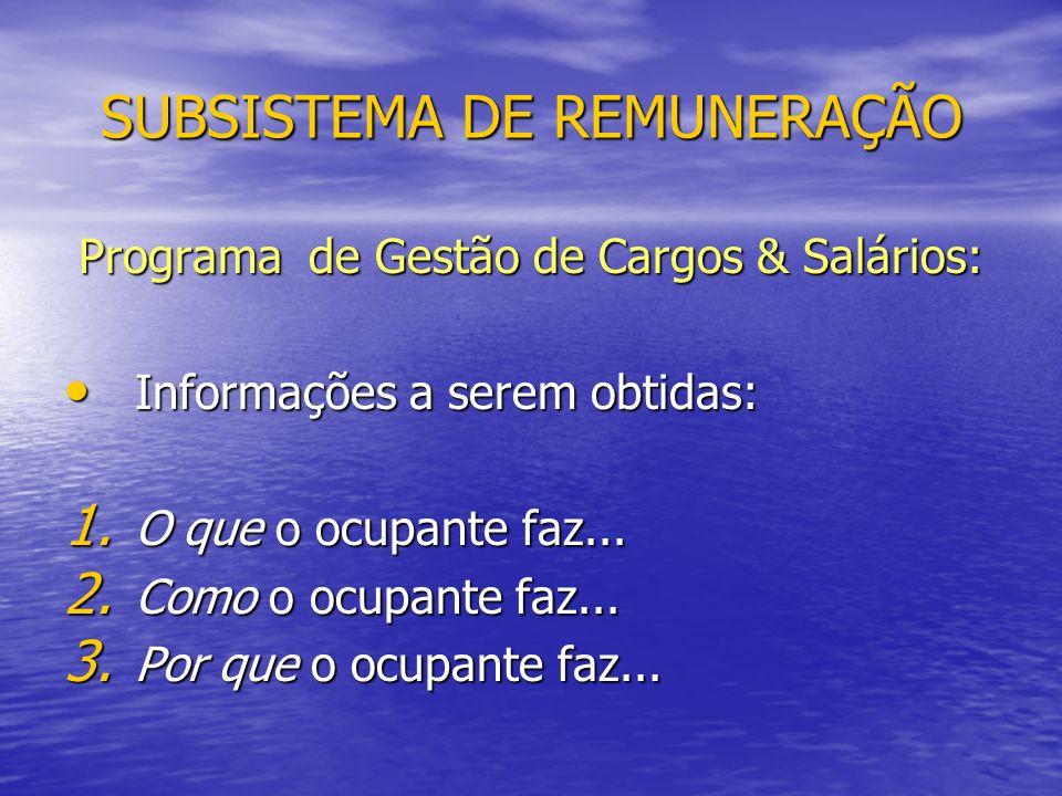 SUBSISTEMA DE REMUNERAÇÃO Programa de Gestão de Cargos & Salários: Informações a serem obtidas: Informações a serem obtidas: 1.
