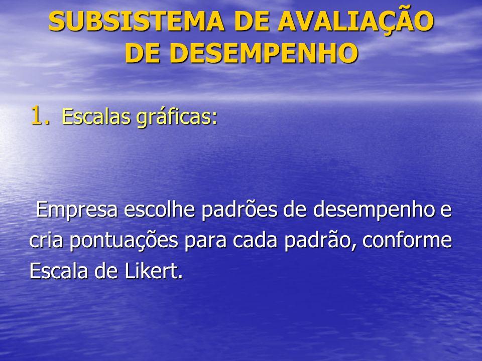 SUBSISTEMA DE AVALIAÇÃO DE DESEMPENHO 1.