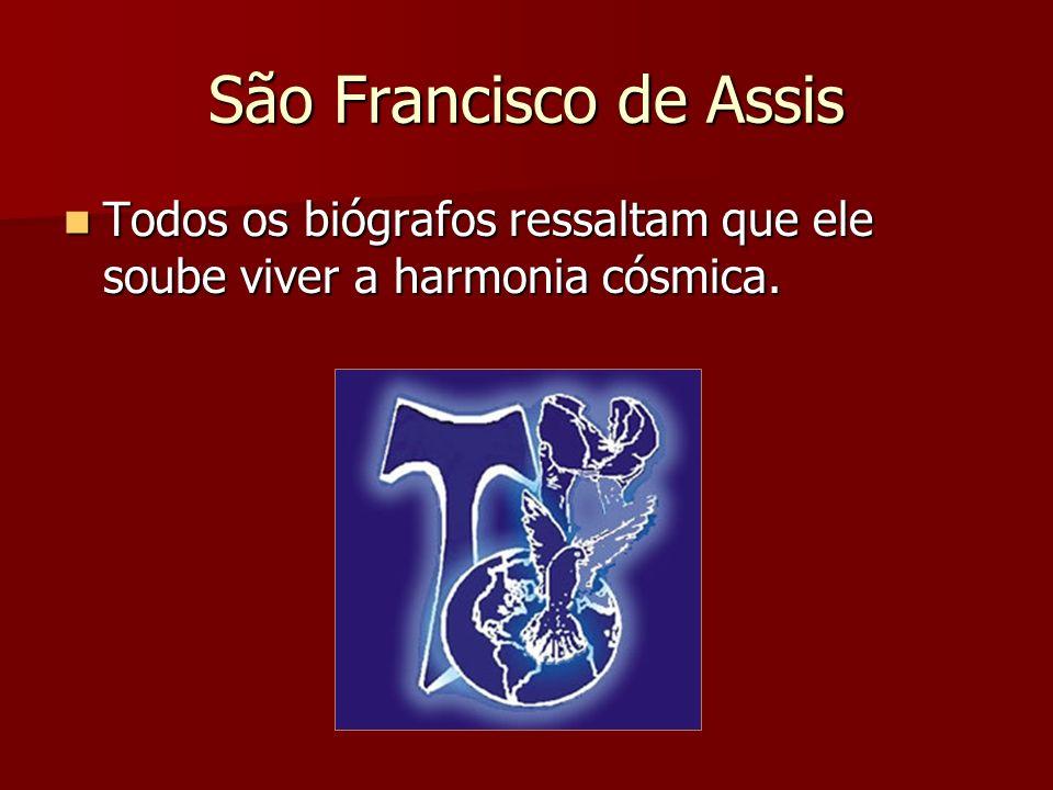 São Francisco de Assis Vivia de modo singular a relação fraterna com todos os seres da criação.