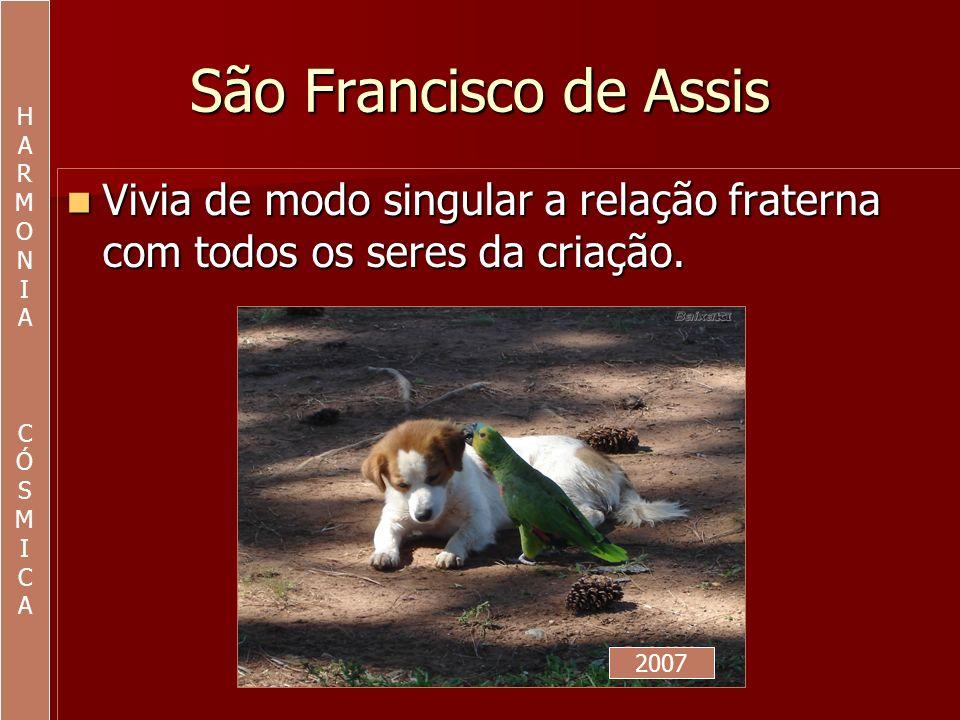 São Francisco de Assis Tratava cada ser com delicada cortesia.