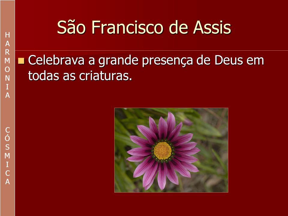 São Francisco de Assis e a natureza Por uma questão de sobrevivência é indispensável preservar a natureza.