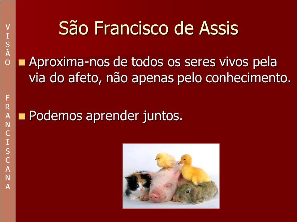 São Francisco de Assis Abandonou velhas ordens como atitudes consumistas.