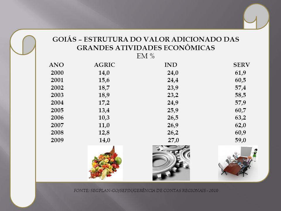GOIÁS – ESTRUTURA DO VALOR ADICIONADO DAS GRANDES ATIVIDADES ECONÔMICAS EM % ANO AGRIC IND SERV 2000 14,0 24,0 61,9 2001 15,6 24,4 60,5 2002 18,7 23,9