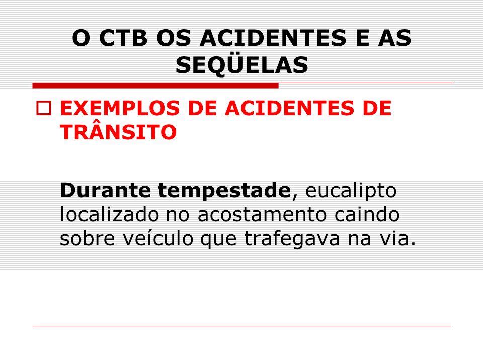 O CTB OS ACIDENTES E AS SEQÜELAS EXEMPLOS DE ACIDENTES DE TRÂNSITO Durante tempestade, eucalipto localizado no acostamento caindo sobre veículo que trafegava na via.