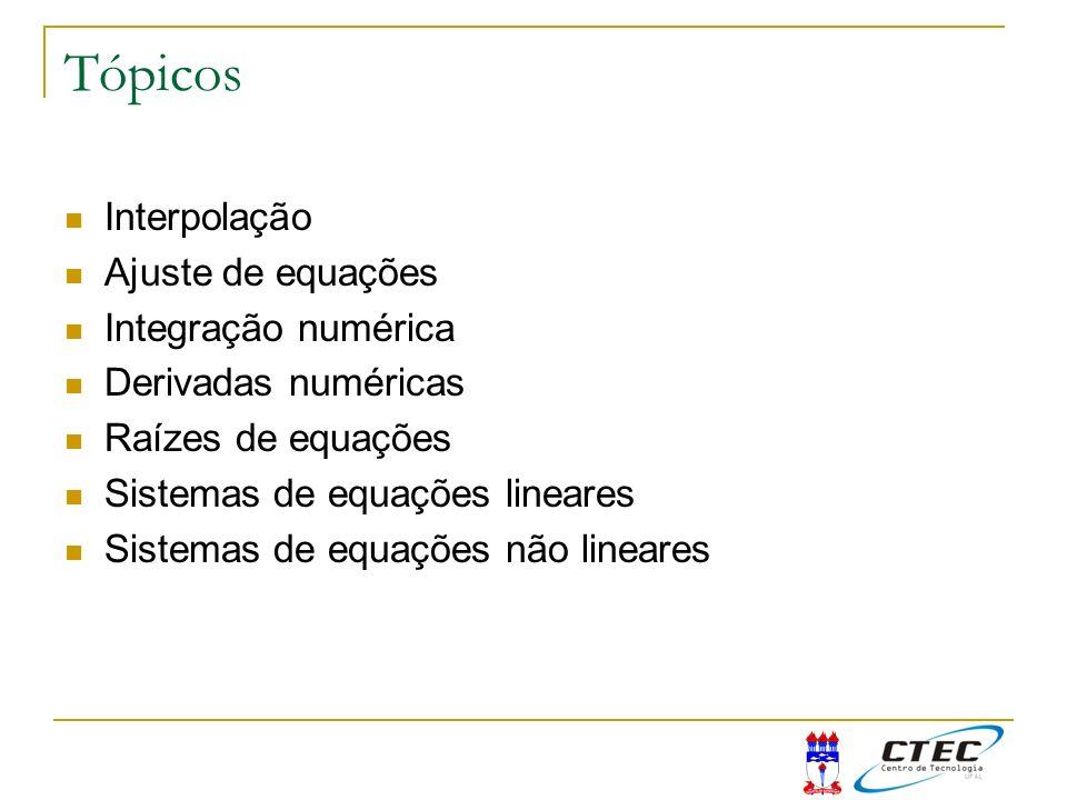 Tópicos Interpolação Ajuste de equações Integração numérica Derivadas numéricas Raízes de equações Sistemas de equações lineares Sistemas de equações