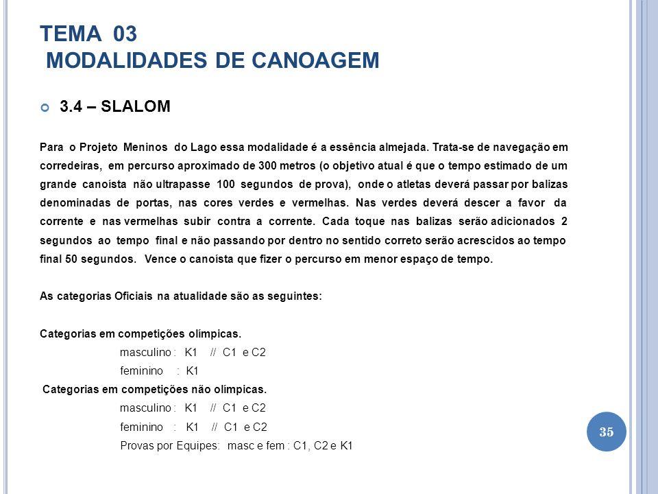TEMA 03 MODALIDADES DE CANOAGEM 3.4 – SLALOM Para o Projeto Meninos do Lago essa modalidade é a essência almejada. Trata-se de navegação em corredeira