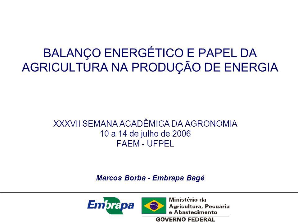 BALANÇO ENERGÉTICO E PAPEL DA AGRICULTURA NA PRODUÇÃO DE ENERGIA XXXVII SEMANA ACADÊMICA DA AGRONOMIA 10 a 14 de julho de 2006 FAEM - UFPEL Marcos Bor
