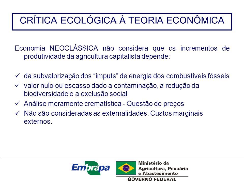 CRÍTICA ECOLÓGICA À TEORIA ECONÔMICA Economia NEOCLÁSSICA não considera que os incrementos de produtividade da agricultura capitalista depende: da sub