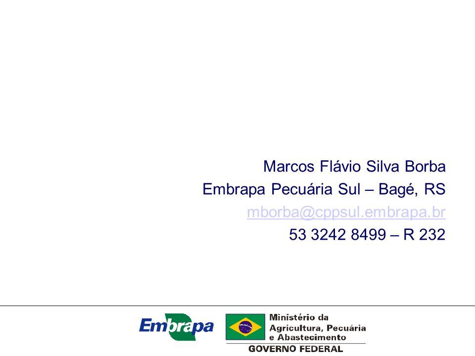 Marcos Flávio Silva Borba Embrapa Pecuária Sul – Bagé, RS mborba@cppsul.embrapa.br 53 3242 8499 – R 232