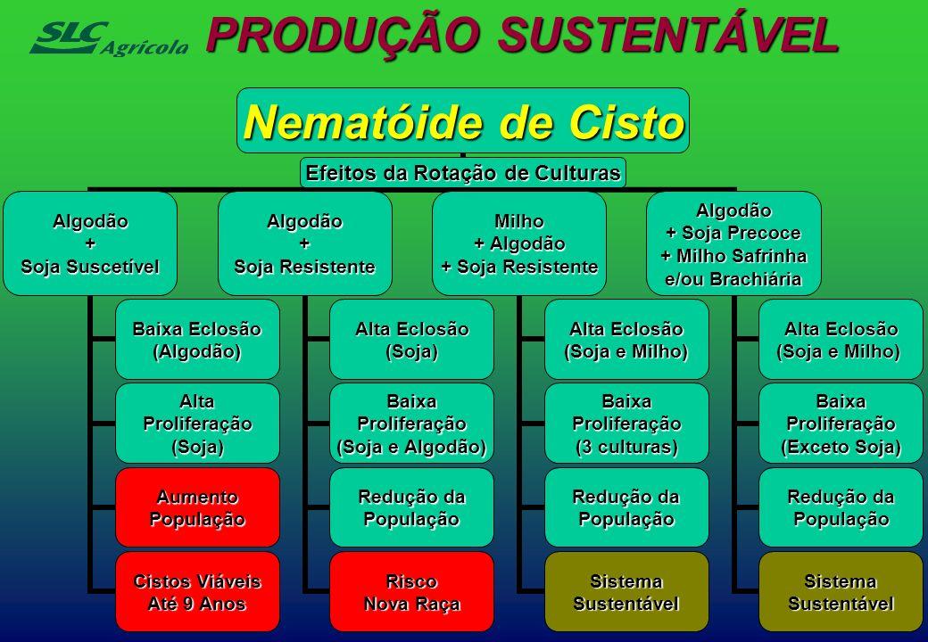 PRODUÇÃO SUSTENTÁVEL Nematóide de Cisto Efeitos da Rotação de Culturas Algodão+ Soja Suscetível Baixa Eclosão (Algodão) AltaProliferação(Soja) Aumento