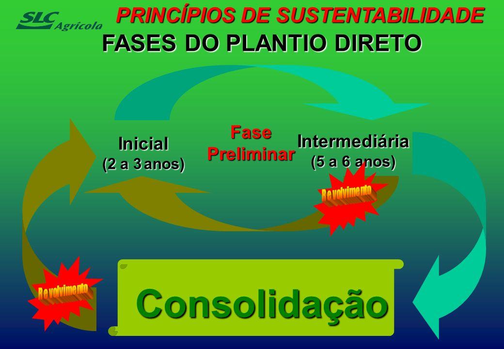 Inicial (2 a 3 anos) Intermediária (5 a 6 anos) FasePreliminar FASES DO PLANTIO DIRETO Consolidação PRINCÍPIOS DE SUSTENTABILIDADE
