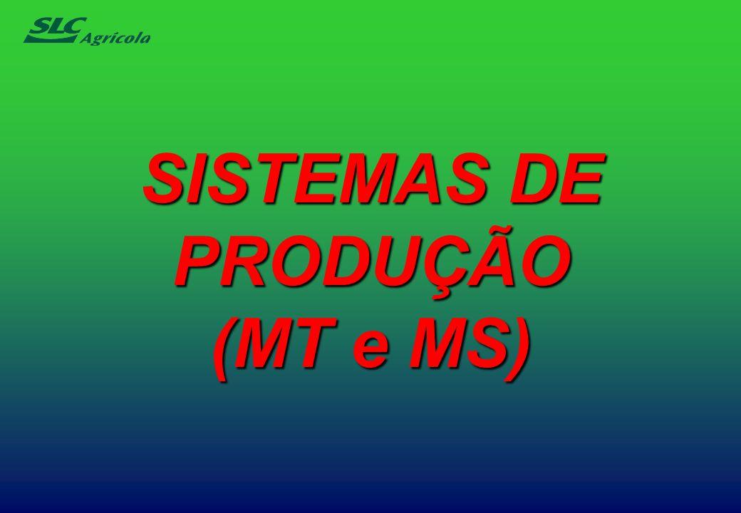 SISTEMAS DE PRODUÇÃO (MT e MS)