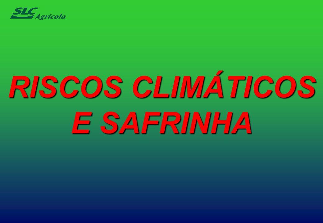 RISCOS CLIMÁTICOS E SAFRINHA