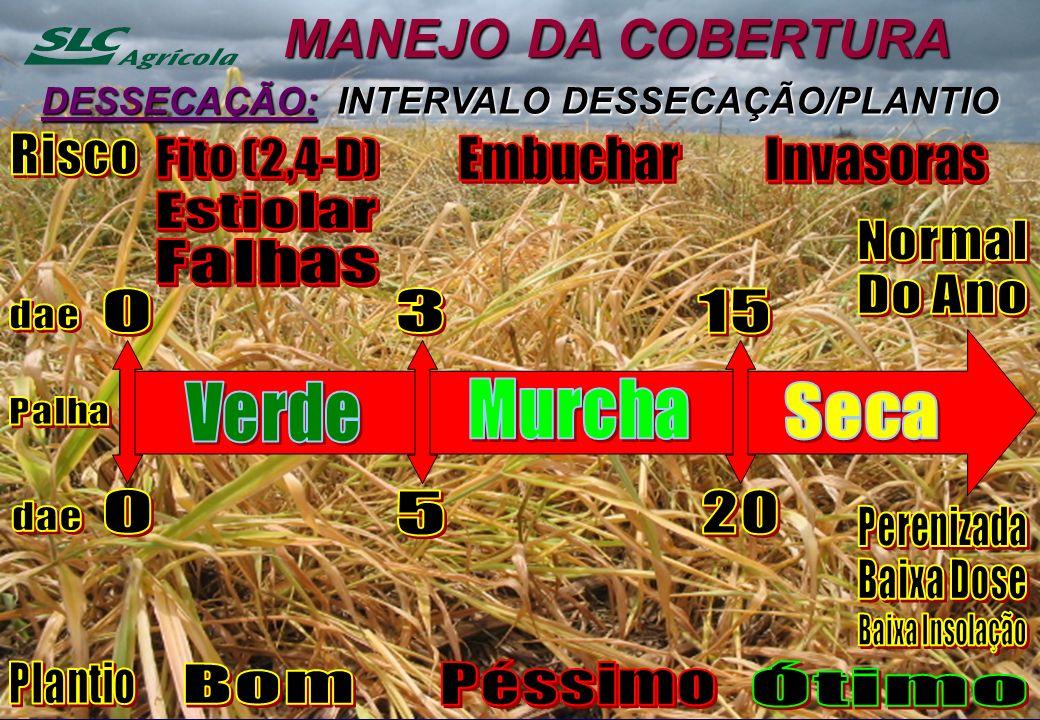 MANEJO DA COBERTURA DESSECAÇÃO: INTERVALO DESSECAÇÃO/PLANTIO
