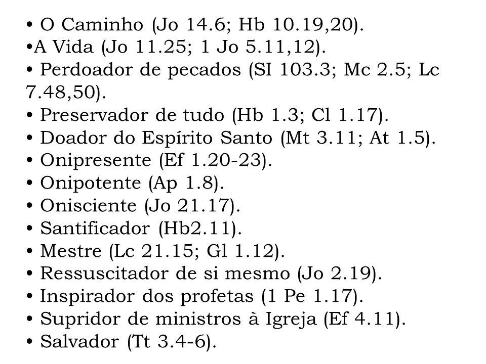 O Caminho (Jo 14.6; Hb 10.19,20). A Vida (Jo 11.25; 1 Jo 5.11,12). Perdoador de pecados (SI 103.3; Mc 2.5; Lc 7.48,50). Preservador de tudo (Hb 1.3; C