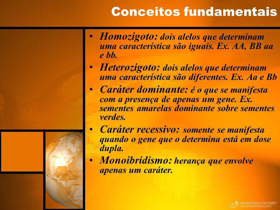 Conceitos fundamentais Homozigoto: dois alelos que determinam uma característica são iguais. Ex. AA, BB aa e bb. Heterozigoto: dois alelos que determi